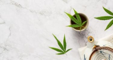 Θεραπευτικές Ιδιότητες της Φαρμακευτικής Κάνναβης